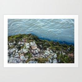 Moss 3 Art Print