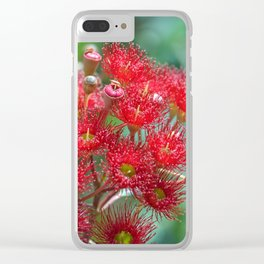 Red Flowering Gum Clear iPhone Case