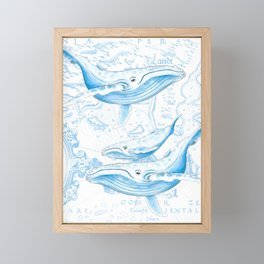Blue Whales On White Framed Mini Art Print