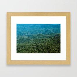 Sea of Trees Framed Art Print