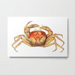 Vintage Crab Metal Print