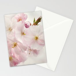 Spring 273 Stationery Cards