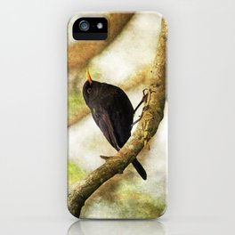 Blackbird iPhone Case
