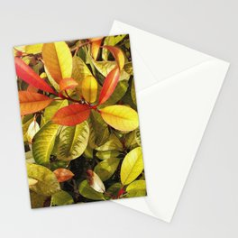 Breathe new Spring Stationery Cards