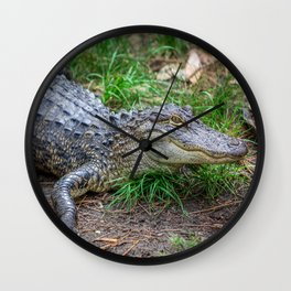 Aligator - Hello Darlin' Wall Clock