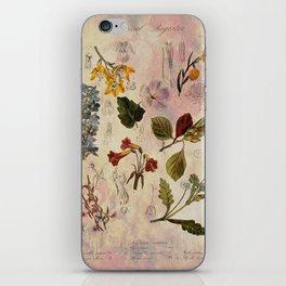Botanical Study #1, Vintage Botanical Illustration Collage iPhone Skin