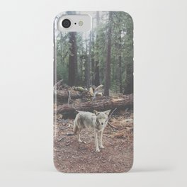Injured Coyote iPhone Case