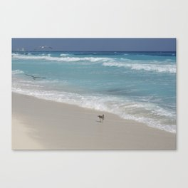 Carribean sea 8 Canvas Print