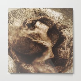 DRYER SHEET Metal Print