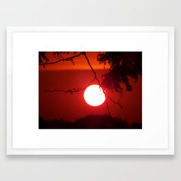 evening silhouettes 2  Framed Art Print