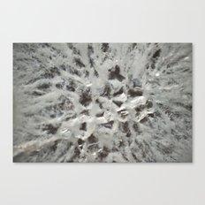Crystal 1 Canvas Print