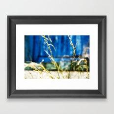 Urban Wild Grass Framed Art Print