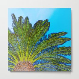 Palm Tree Fronds Metal Print
