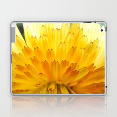 Overwhelming Beauty Laptop & iPad Skin