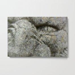 roar Metal Print