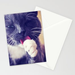 Grooming Cat Stationery Cards