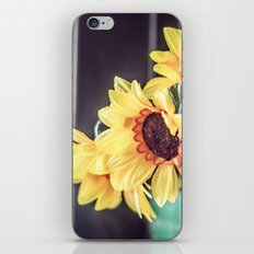 Sunflowers in my kitchen iPhone & iPod Skin