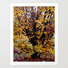 Paintography Of Autumn Art Print