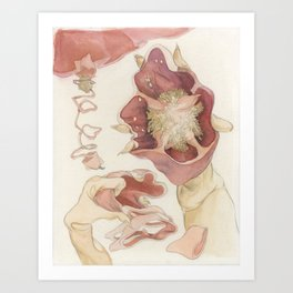 The Red Bell Pepper Art Print