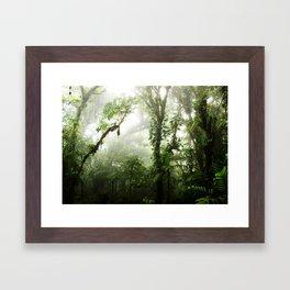 Cloud Forest Framed Art Print