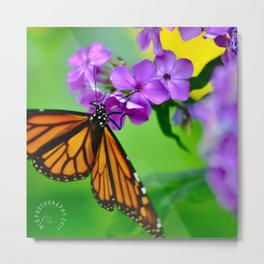 Butterfly Wings and Pixie Dust Metal Print
