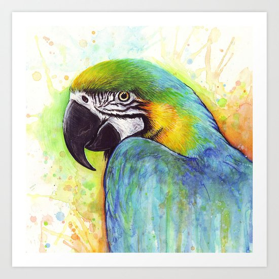 Macaw Bird Parrot Colorful Tropical Animal Art Print