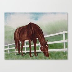 Sissy's Horse Canvas Print