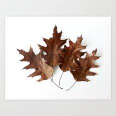 Autumnal Love Art Print