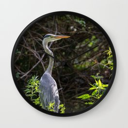 Gray heron on the edge of a pond Wall Clock