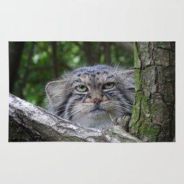 Wild Cat Rug