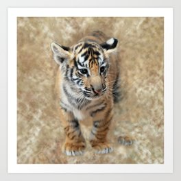 Tiger cub emerging Art Print