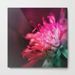 Dream Flower 10 Metal Print