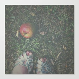 Don't Eat the Apple Canvas Print