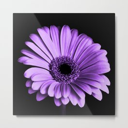 Big Purple Flower Violet Floral Art Metal Print