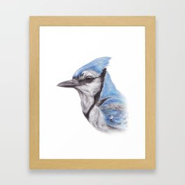 Blue Jay - CYANOCITTA CISTATA | Watercolour | Painting | Animal | Nature | Art Framed Art Print