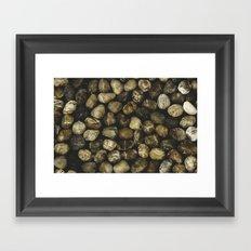 River Stones Framed Art Print