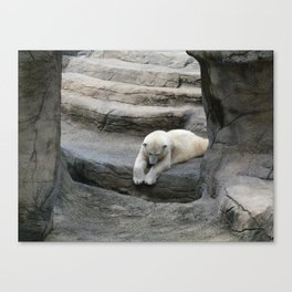 I Wonder if anyone is down There? Canvas Print
