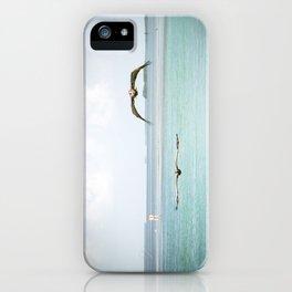 Pelicans in Flight iPhone Case