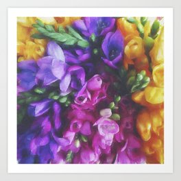 Freesias Art Print