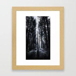 In the Woods V Framed Art Print