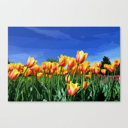 Line of Beauty Canvas Print