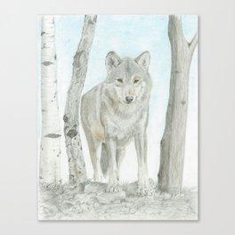 Lone Wof Canvas Print