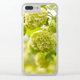 Viburnum opulus Roseum flowers Clear iPhone Case