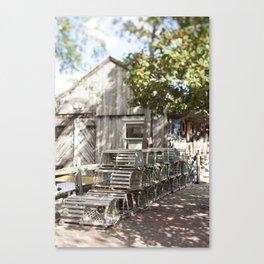 Beneath the Holly Tree Canvas Print
