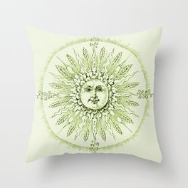 Field of Beams Celadon Green Throw Pillow