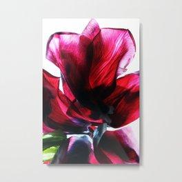 Flower Petals Artfully Arranged Metal Print