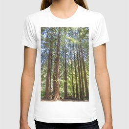 Redwood Grove T-shirt