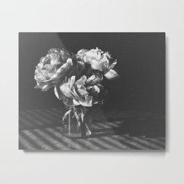 peonies [bw] 03 Metal Print