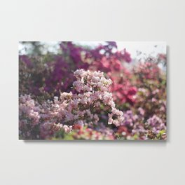 The most beautiful colors Metal Print