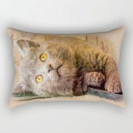 KITTEN RELAX Rectangular Pillow